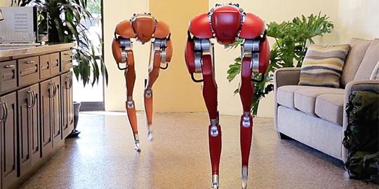 Cassie Robot fattorino per la logistica dell'ultimo miglio